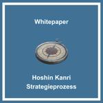 Whitepaper Hoshin Kanri Strategieprozess Grafik